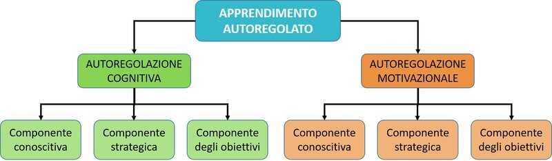 Schema dell'apprendimento autoregolato